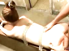 TINY RED HEAD SLUT FUCKED DOGGY STYLE IN BONDAGE GIF LOOP CONTINUAL